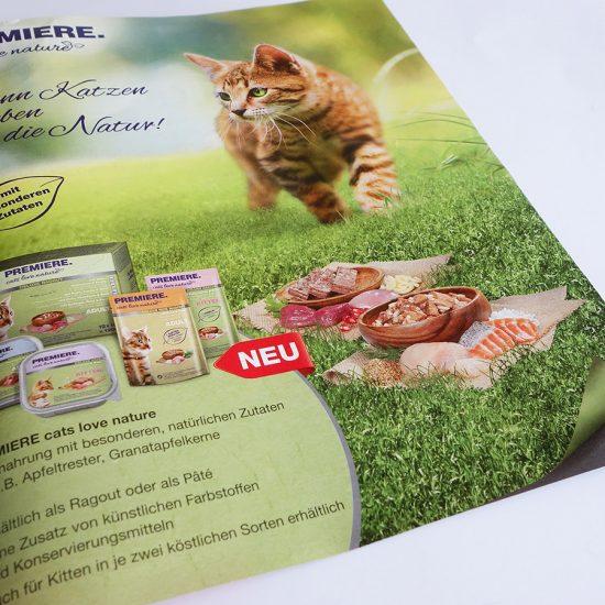 PREMIERE cats love nature :: Anzeige