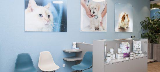 Activet Tierarztpraxis Krefeld