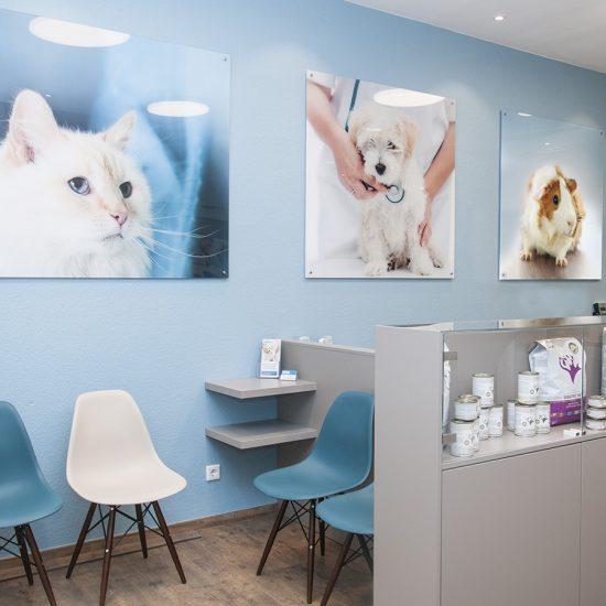 Activet Tierarztpraxis - Krefeld