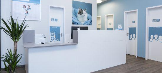 Activet Tierarztpraxis Hannover Empfang