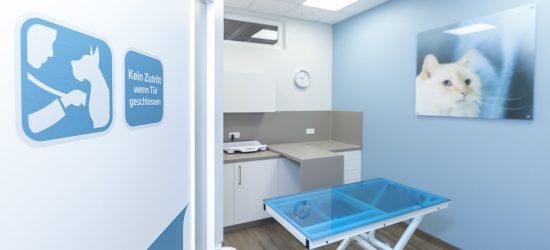 Activet Tierarztpraxis Behandlungsraum